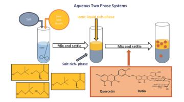 Recovery of flavonoids using novel biodegradable choline amino acids ionic liquids based ATPS
